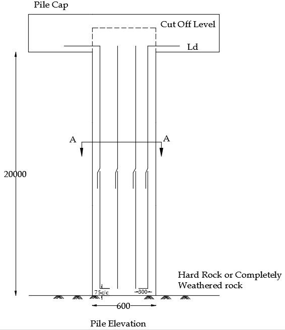 Elevation of Pile column